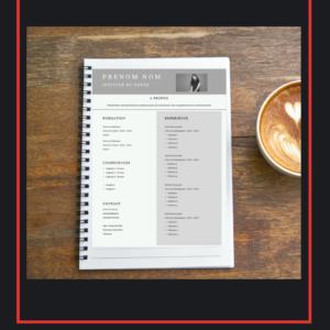 CV avec Audit Complet